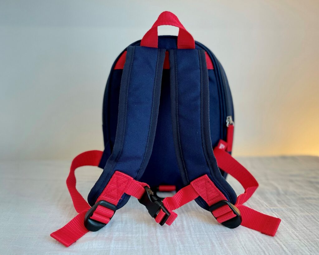 Zip and Zoe mini backpack in navy colourblock - back view