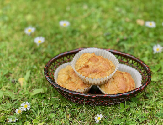 Apple Banana Carrot Muffins on the grass
